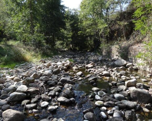 Niveau CRISE sur le bassin versant de la Cance et ses affluents