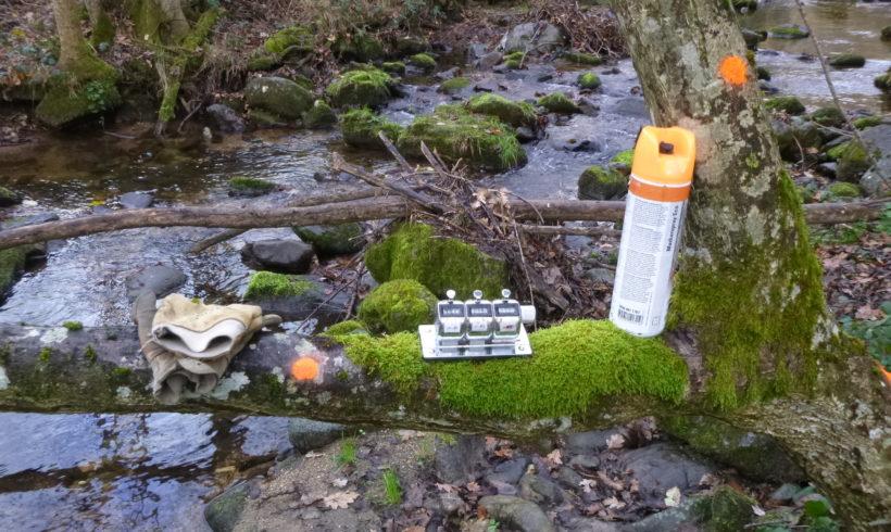 Abattre des arbres en bord de cours d'eau