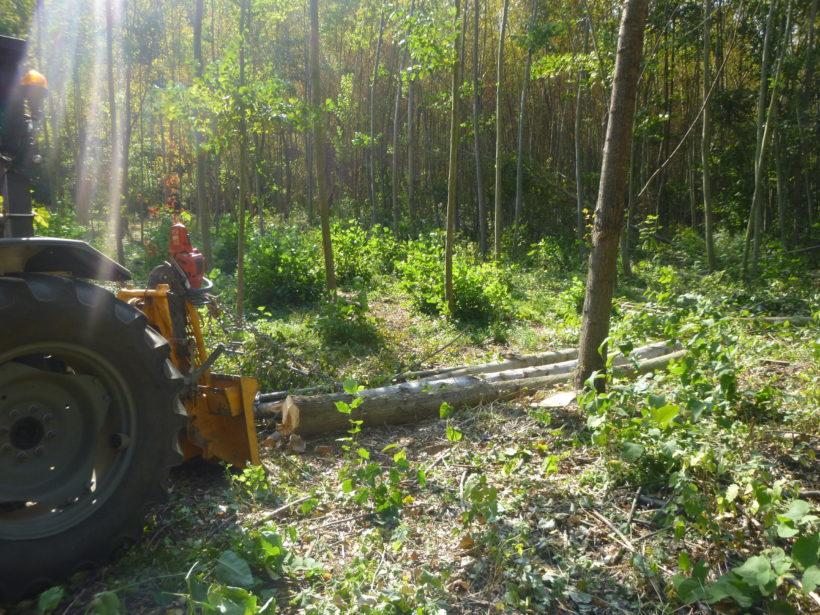 Fin des travaux de restauration de la zone humide de Gardache