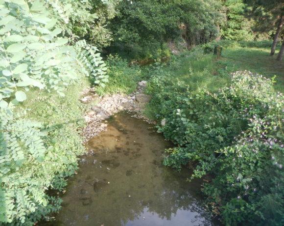 Les débits des cours d'eau baissent depuis plusieurs semaines